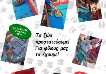 Δράσεις για την Παγκόσμια Ημέρα των Ζώων - Βρεφονηπιακός Σταθμός και Νηπιαγωγείο